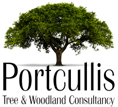Portcullis Tree and Woodland Consultancy